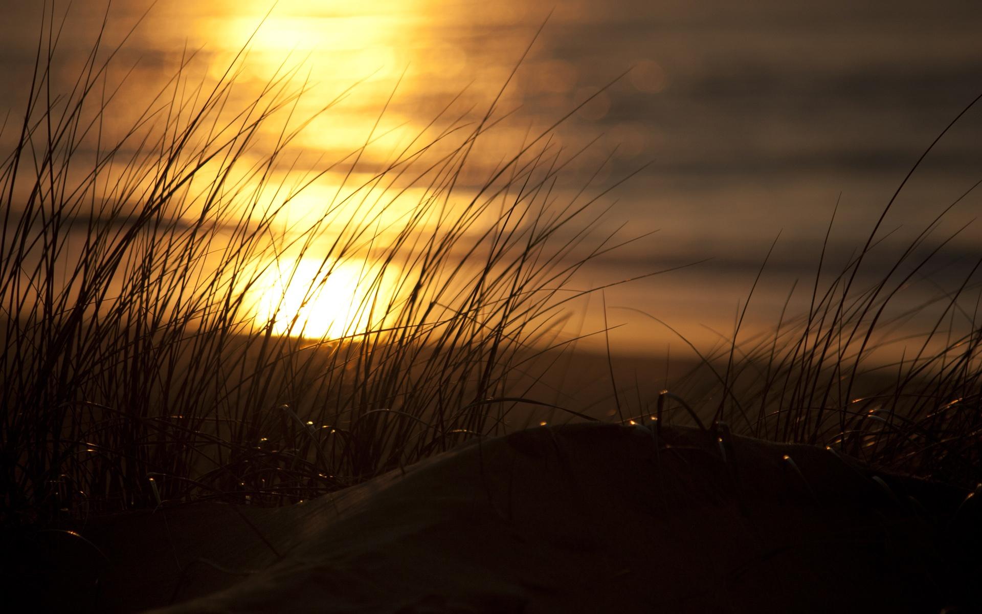 pretty wallpaper sunset beach