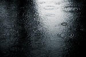 rain drops download