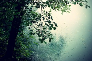 rain images awesome