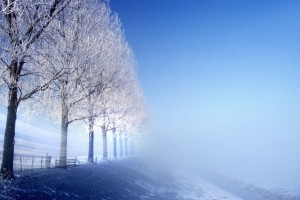 scenery winter background