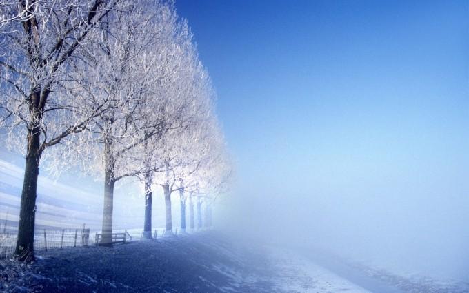scenery winter background