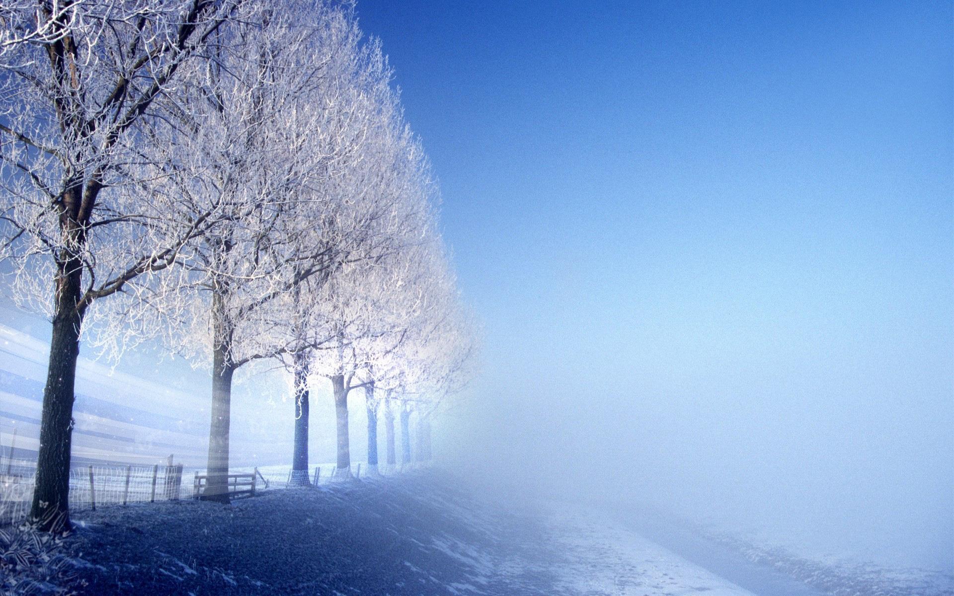 Scenery Winter Background Hd Desktop Wallpapers 4k Hd