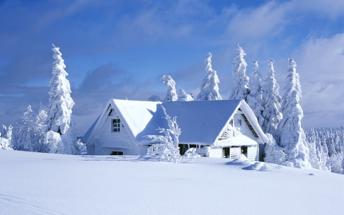 snow images