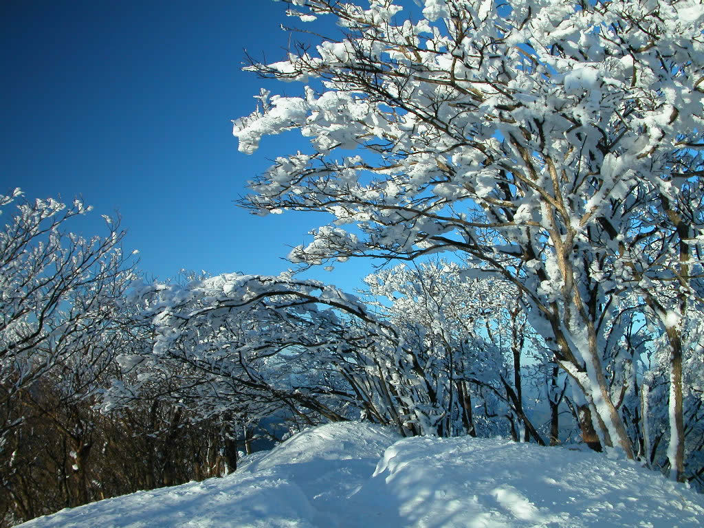snow pictures hd