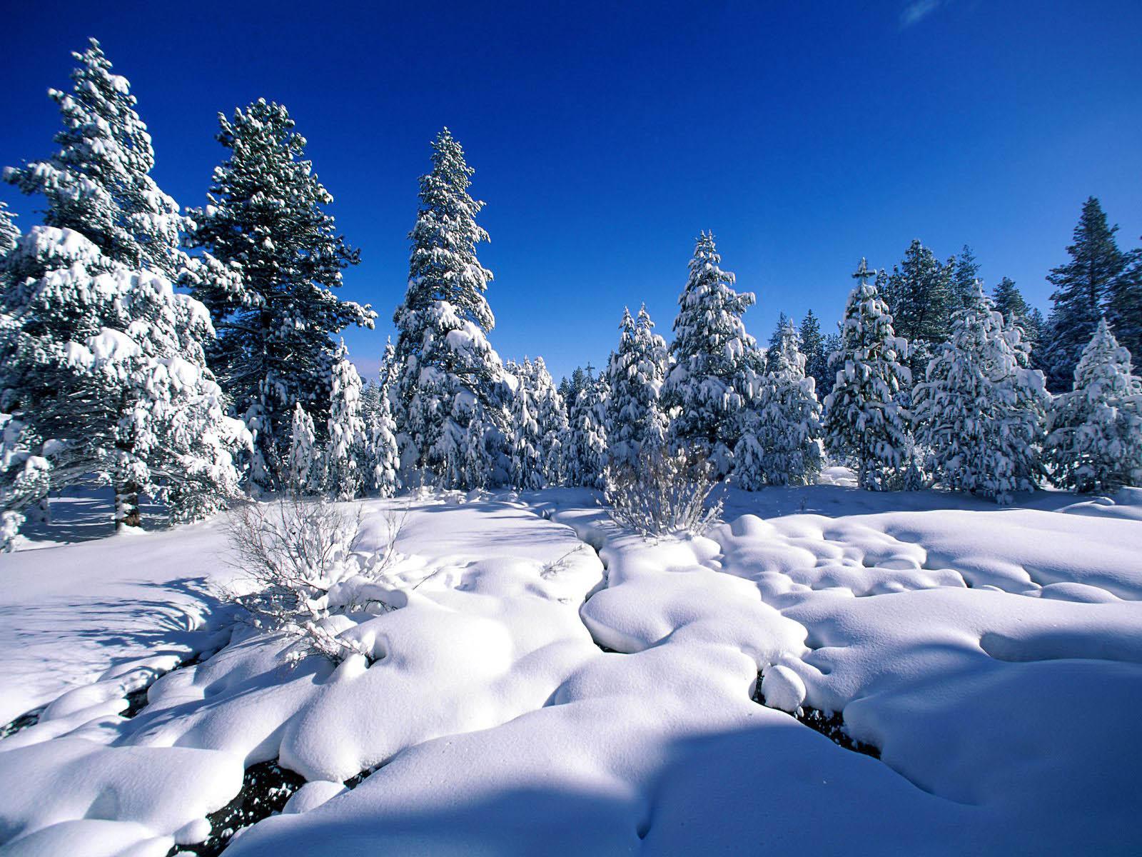 Snow Wallpaper Desktop  HD Wallpapers 4k
