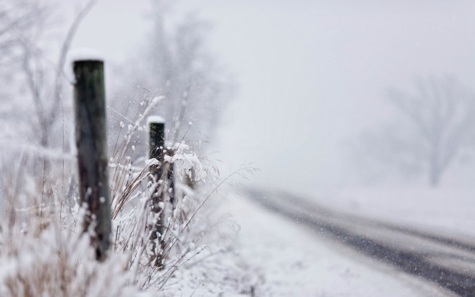 snow wallpaper photography