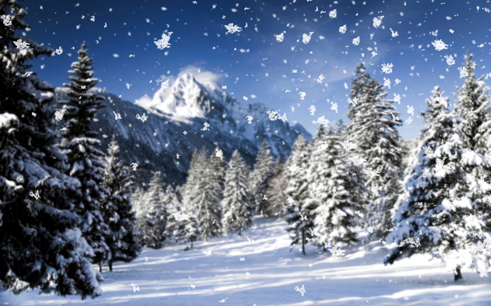 snowflasked wallpaper hd