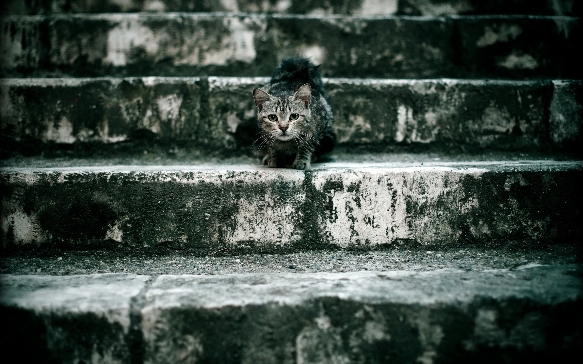 stairs wallpaper background