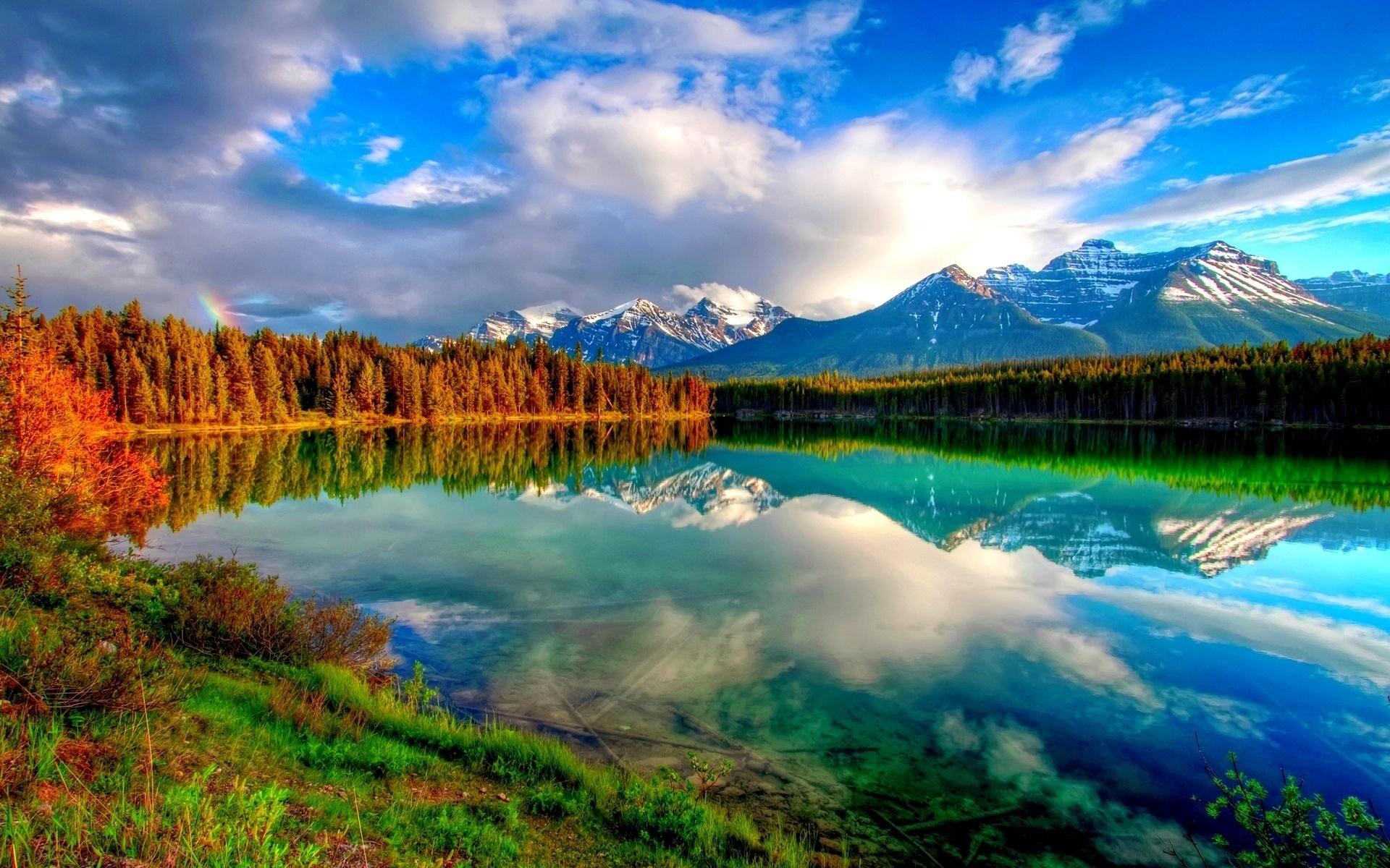 stunning wallpaper nature hd