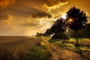 sunset images scenery hd
