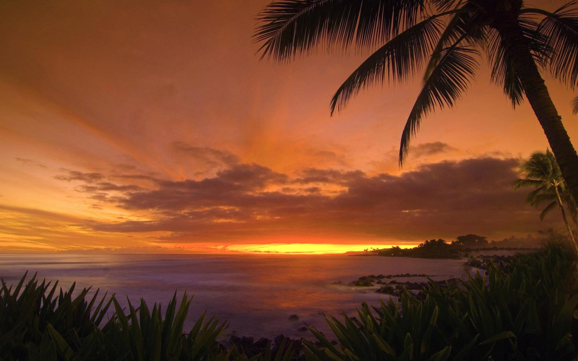 sunset images sunset beach