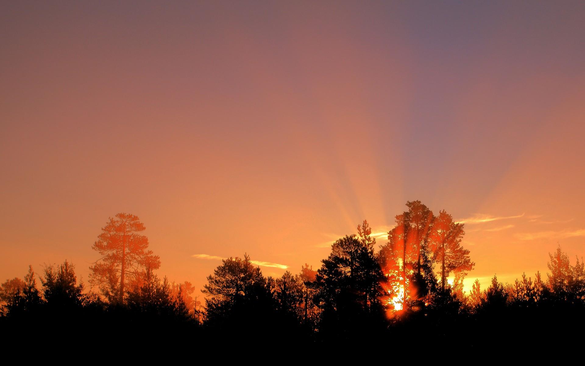 sunset scenery silhouette