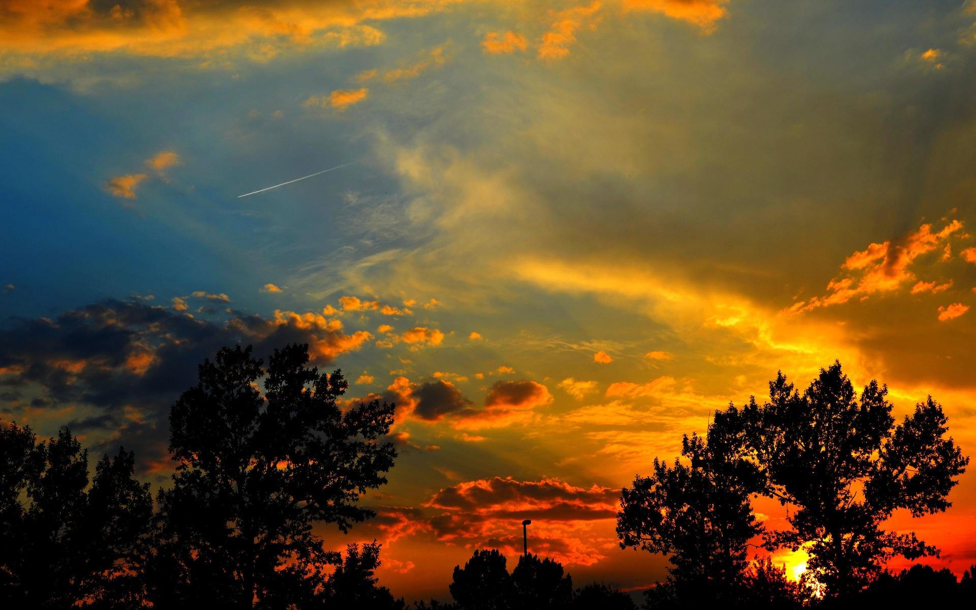 sunset silhouette nature