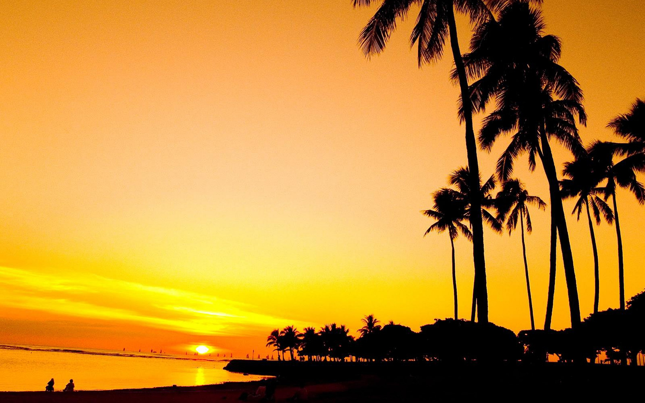 Sunset Wallpapers Palm Trees Hd Desktop Wallpapers 4k Hd