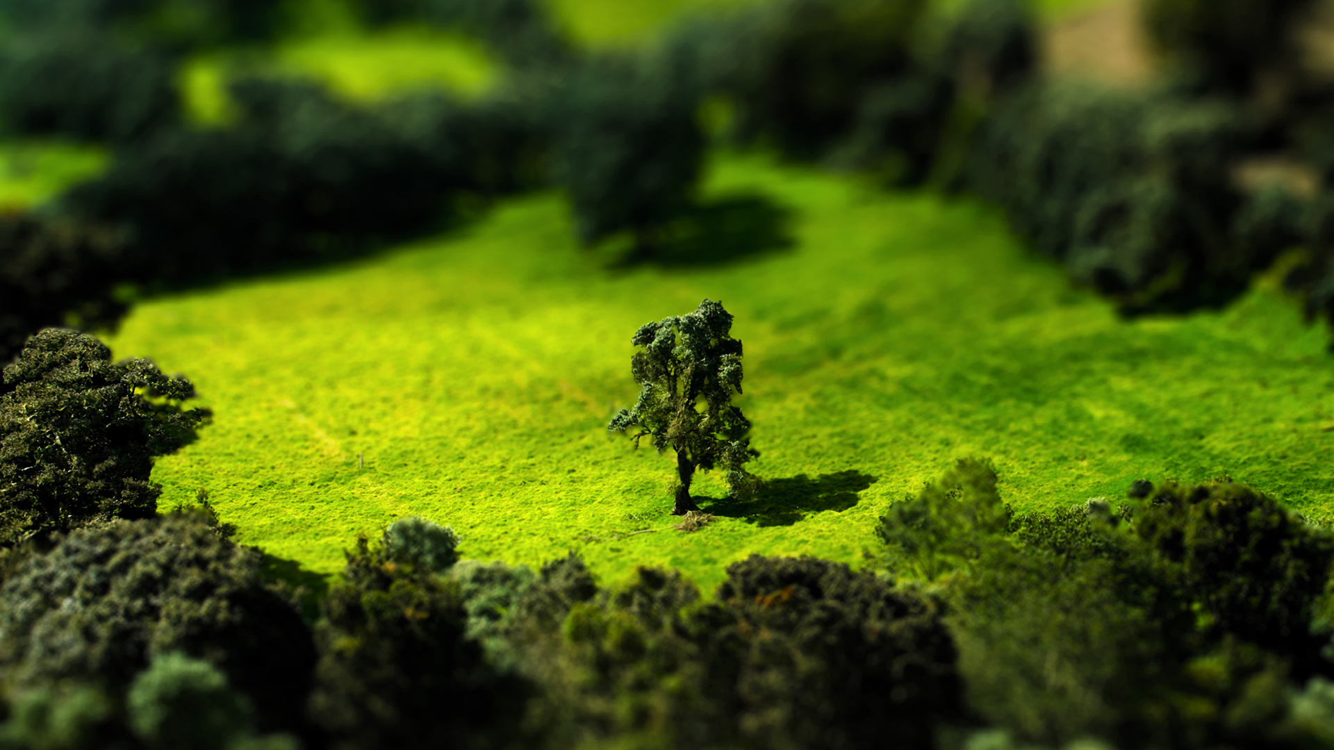 tilt shift wallpapers