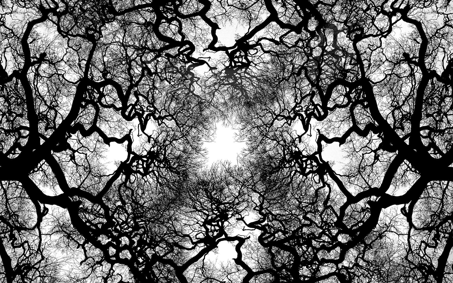 tree wallpaper black