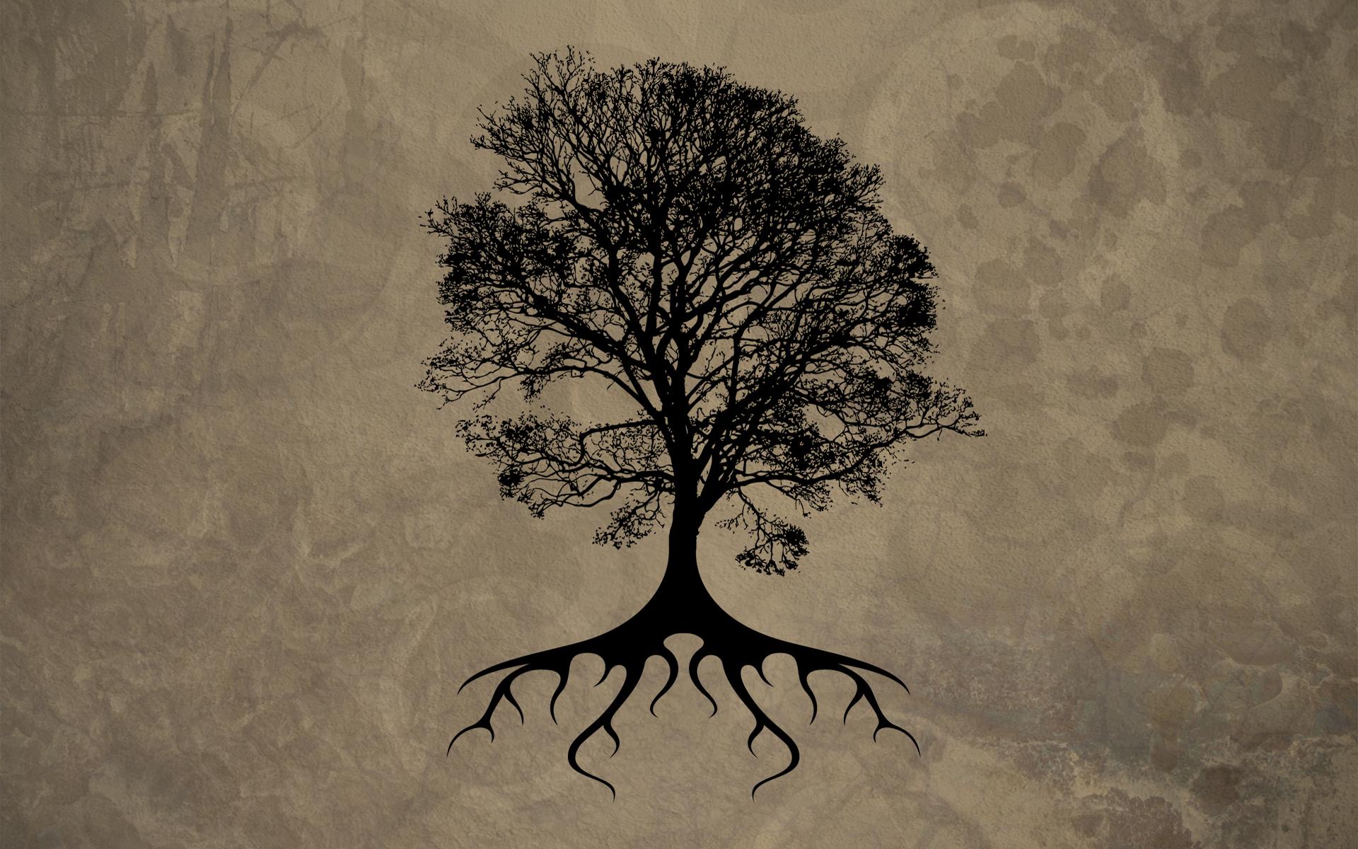 tree wallpaper maple