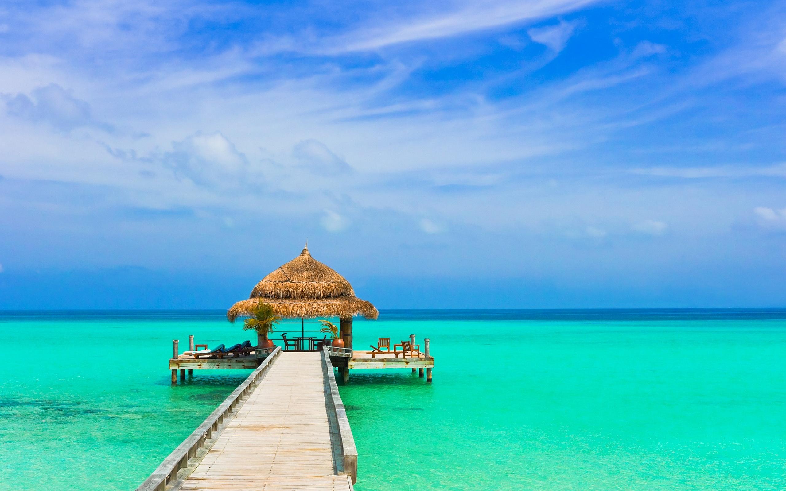 tropical wallpaper resort