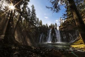 waterfall wallpaper forest