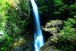 waterfall wallpapers android