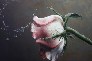 wet rose painting