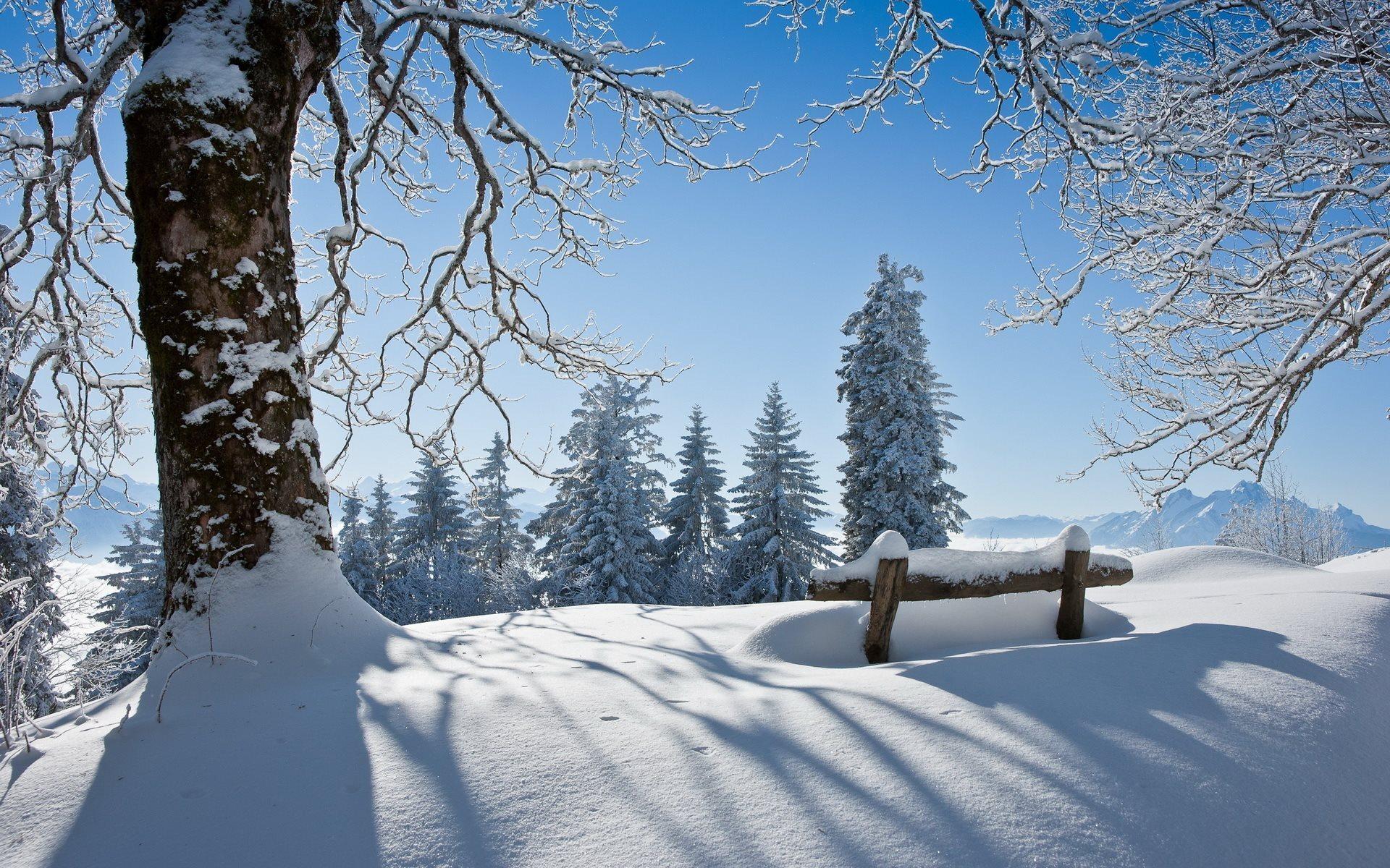 Winter Bench Scenery Hd Desktop Wallpapers 4k Hd