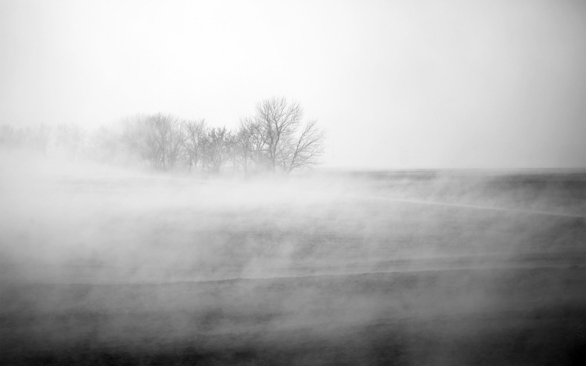 Winter Fog Hd Desktop Wallpapers 4k Hd