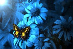 blue flowers 3d