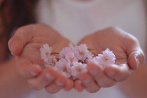 girl hands flowers photo