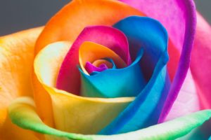 hd colourful wallpapers