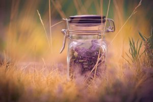 hd lavender wallpaper