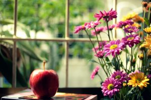 mood apple red flowers pink yellow