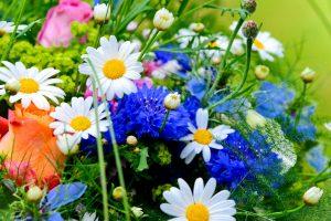 vivid flowers wallpaper
