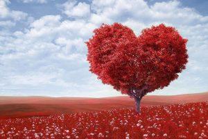 love wallpapers hd 4k 43