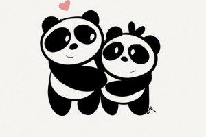 panda wallpaper hd 4k 1