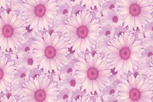 pink aesthetic wallpaper hd 4k 24