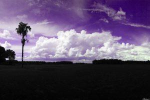 purple wallpaper hd 4k 37