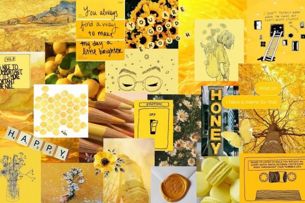 yellow wallpapers hd 4k 12